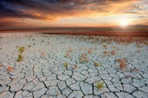 Dry cracked earth, result of global warming. Photo by prozac1